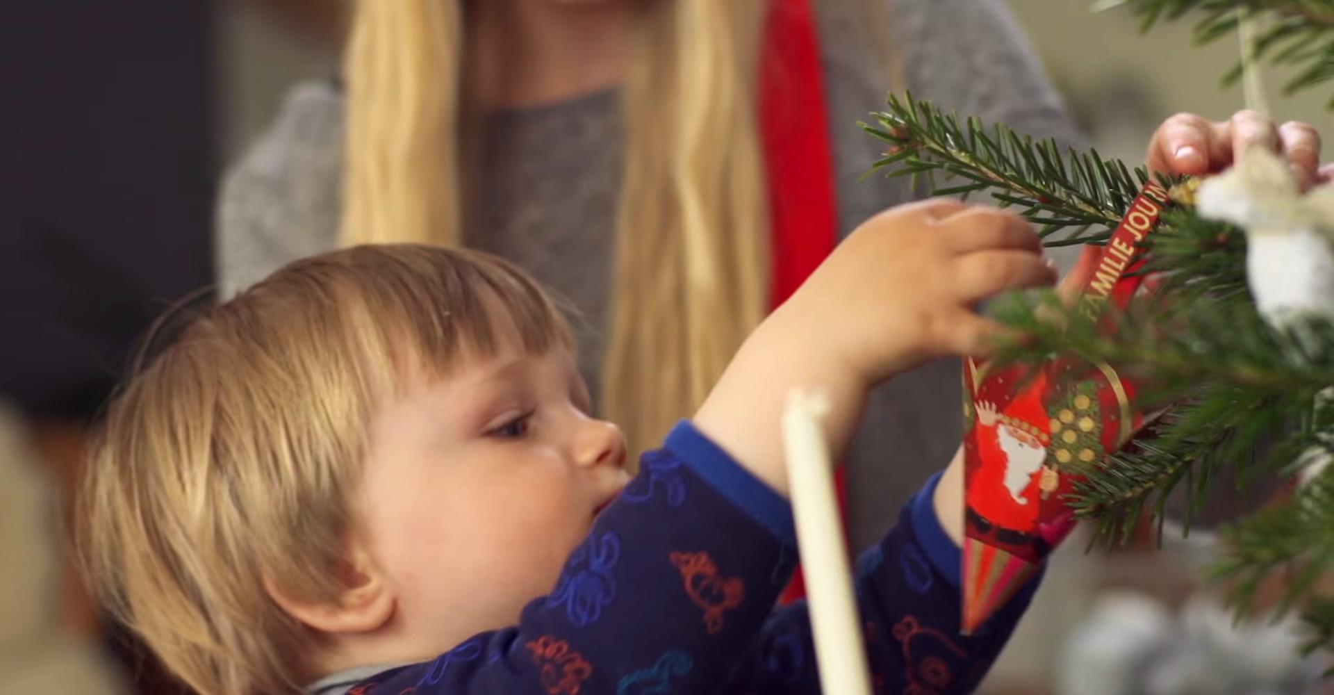 Prachtige Original Nordmann kerstbomen vanaf € 20,-