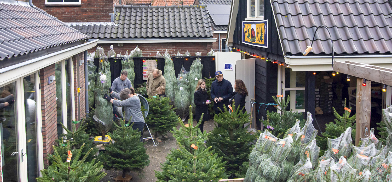 Contactgegevens en route bobskerstbomen.nl - Bobs Bomen Castricum