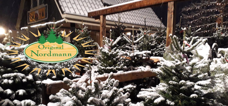 Nordmann kerstboom prijzen 2021 in Castricum